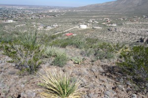 "View from ""A"" trail down to trailhead for Ortega Canyon South"