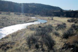 Broad meadows near West Fork trailhead