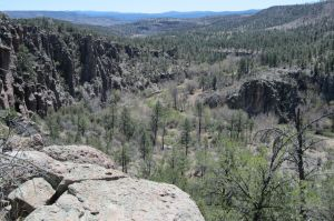 View back towards the West Fork