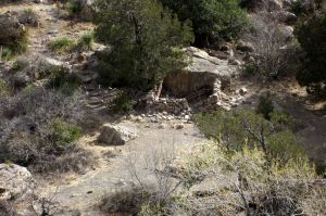 15 stone ruins in upper Dog Canyon I