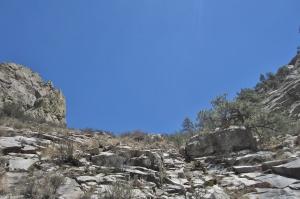 2013-6-01 61 pine below a tongue of granite (departure)