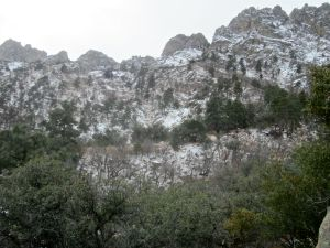 Prominent, tree-topped rib parallel to the Organ Mountains skyline