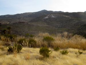 Ortega Peak from Paiute Trail trailhead. The canyon is to your left (not visible here)