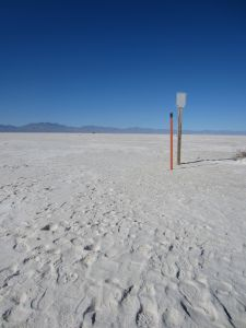 Trail stakes indicating the furthest point on the Alkali Trail loop, found a few hundred feet out in the playa