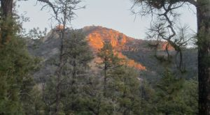 Vicks Peak from FR 225