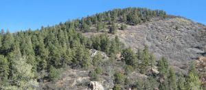 Bald knob on ridge above Nogal Canyon