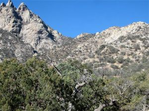 View of south side of Aguirre Springs Rib - note the light-colored rocky side buttress and the more distant green buttress. The latter has a white, tooth-like spire at its foot.