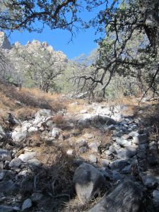 View of arroyo where the scramble leaves the Pine Tree Trail and ascends this waterway.