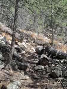 Trail where it leaves the canyon bed and begins switchbacking