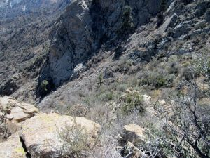 View down the descent route into gray-green thickets