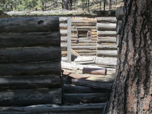 view through two window and two doors of the (roofless) Myers cabin