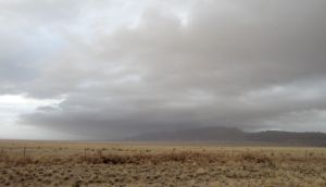 A look back at the Manzano Mountains from US 60. Stormy up there.