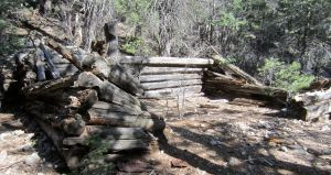 05 cabin ruins