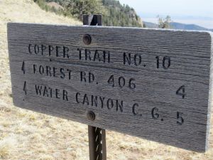 Trail sign at junction of Copper Canyon Train T10 and North Baldy Trail T08