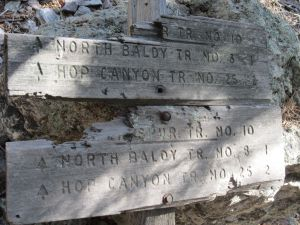 Sign at junction where the north and south extensions for Copper Canyon Trail diverge