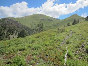 White Horse Hill and headwaters of Bonito Creek