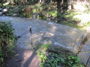 Brown and energetic water at one of the many stream crossings. (Note hiking pole, for perspective).