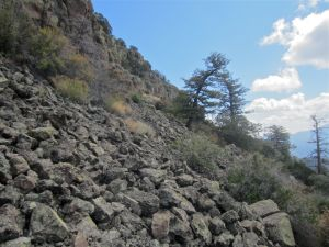 Boulder field at the foot of the mesa wall. The photo shows the wall as it tapers to the east.