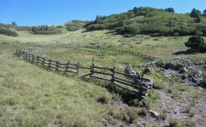 Split rail fencing off the Argentine Canyon seep