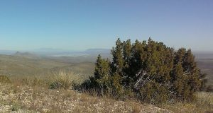 View from trailhead to Elephant Butte