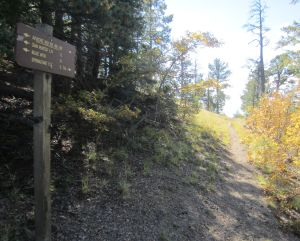 Ridge-top junction between the Apache Kid Trail and the Shipman Trail.