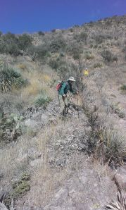 Wendy and Jerry (on descent) in steep and thorny terrain