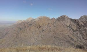 View to North Organ Mountains from Shark's Tooth summit.