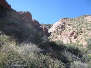 View towards the ridgeline, with the walls of a slot canyon gleaming in the sunlight.