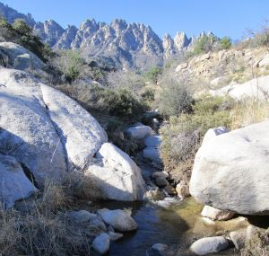 Water flowing in Sotol Creek