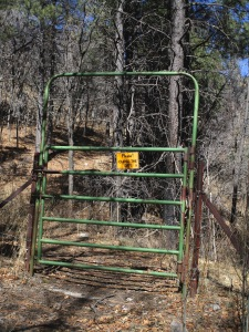 Gated fence in deep forest near the crest.