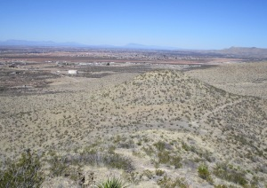 View of the knoll where the main trail departs north, but a useful side trail trends east back to the trailhead.