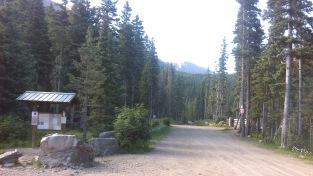 04 Deer Lane