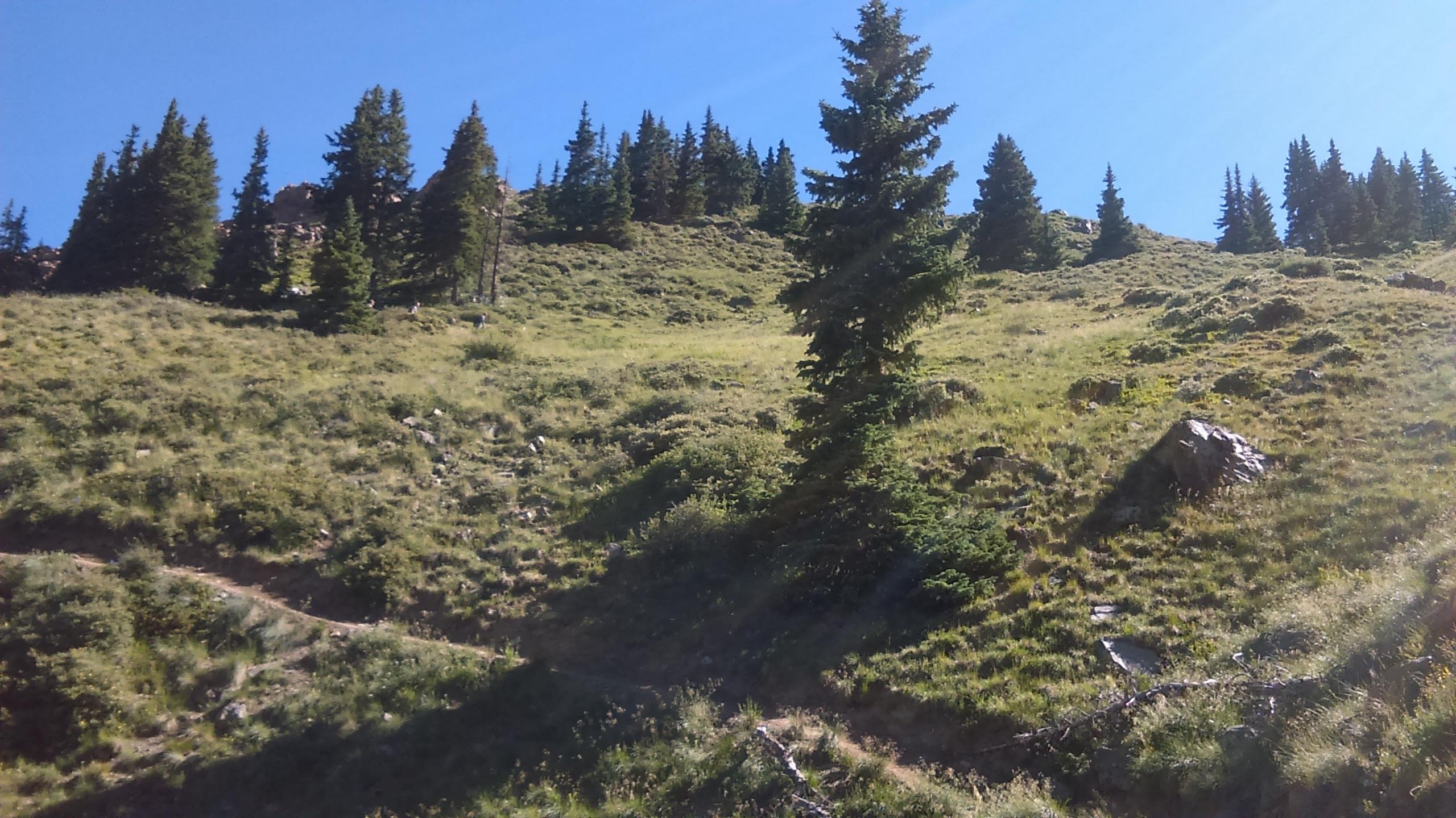 07 Big Horn terrain