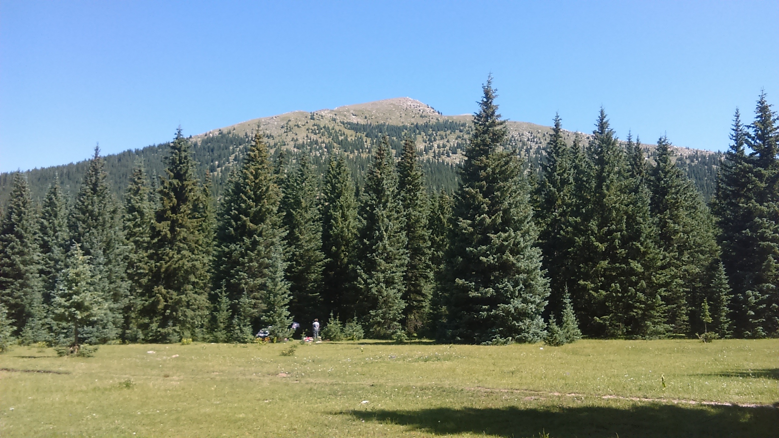 12 Campers in Nambe Meadows below Santa Fe Baldy