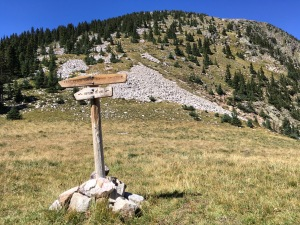 View of grass covered saddle at junction of Skyline Trail and E. Pecos Baldy Summit Trail, the latter marked by paired cairns across the grassy saddle