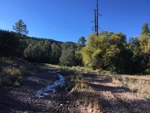 03 Water hazards on road past trailhead