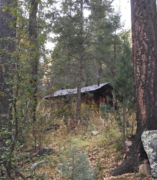 06 abandoned mining cabin