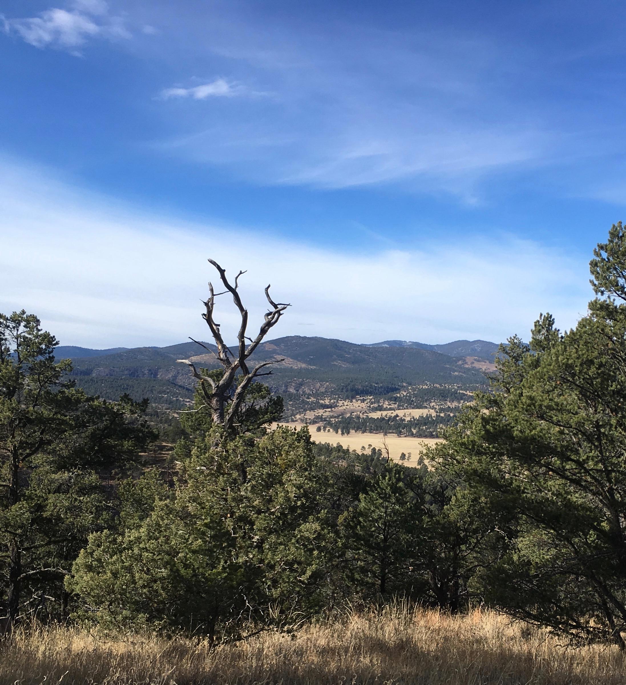 01 Ridge Containing Black Mountain