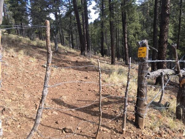 05 Cattle gate 1