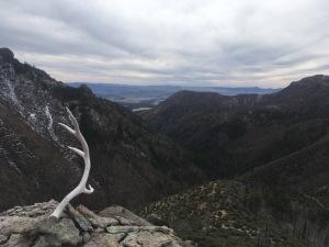 12 Elk horn ridge, looking down Little Dry Creek